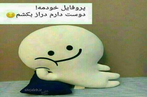 اس ام اس طنز خانه تکانی